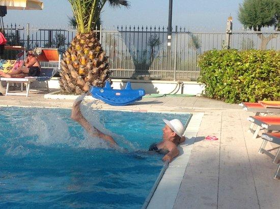 Hotel Belvedere: bagno in piscina