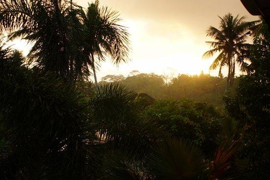 Bhanuswari Resort & Spa: zonsopgang vanuit de kamer