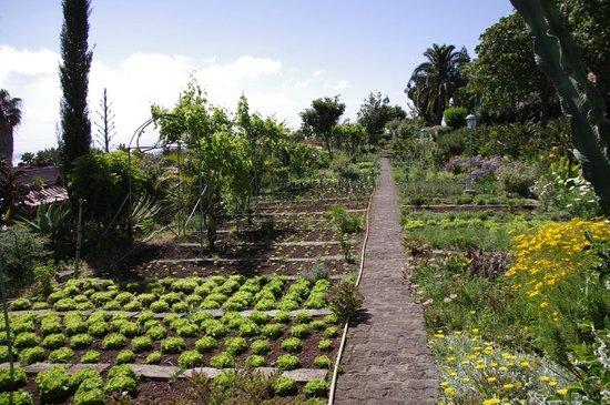 Quinta Splendida : Gemüse- und Kräutergarten