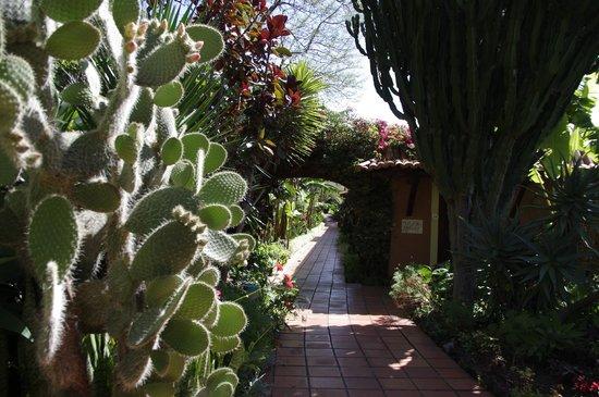 Quinta Splendida : Weg zum Zimmer