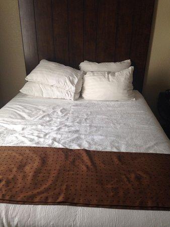 هوليداي إن سان أنطونيو إن دبليو: Bed