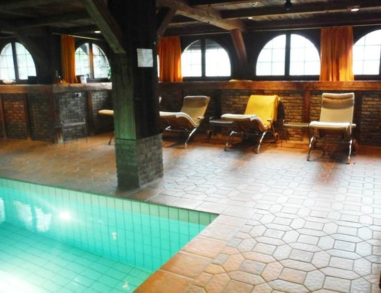 Swiss Chalet Lodge: Salle de repos piscine Schloss-Hotel