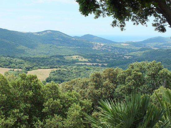 La Bergerie d'Acciola : Vue terrasse