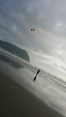 Shilo Inn Suites Hotel - Seaside Oceanfront: The beach behind the hotel perfect kite flying weather.