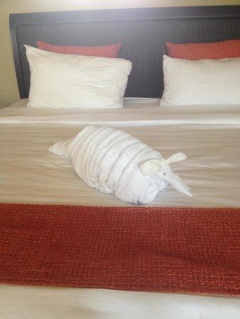 Arenal Kioro Suites & Spa: Armadillo towel! Too cute!
