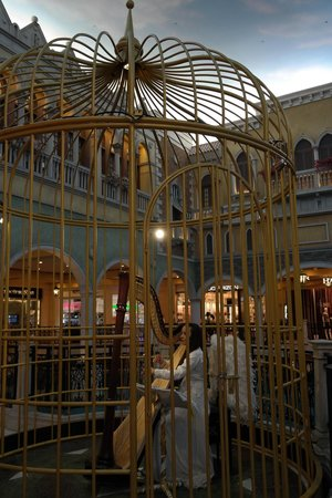 The Grand Canal Shoppes: Harp musician performing in the cage  - www.adriennehoxy.com