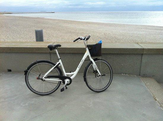 Avenue Hotel Copenhagen: Hotel Hire Bike