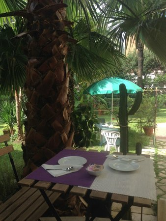 Aedes B&B - The Garden of Dreams: splendido giardino dove fare colazione
