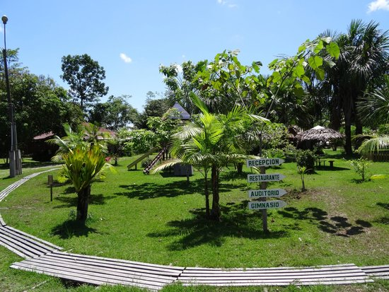 Manish Hotel Ecologico: Tranquil views