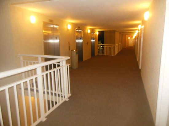 Ocean Drive Beach and Golf Resort: 10th Floor Hallway