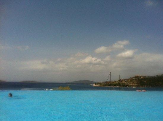 Club Blue Dreams: Infinity pool