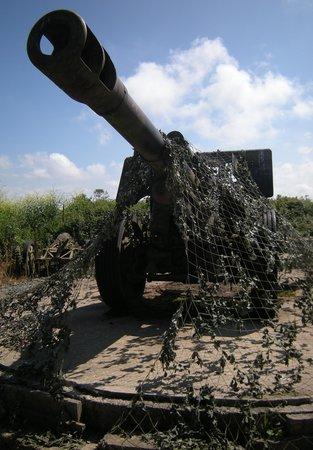 Batterie de Maisy : Kanon in stelling