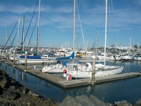 Mantra Hervey Bay : out on the marina