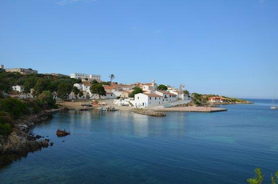 Parco Nazionale Asinara: Cala d'Oliva