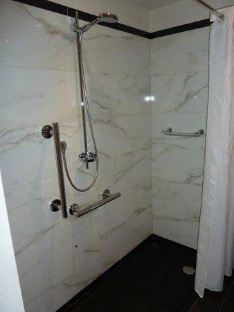 Castille Paris : Disabled access room shower