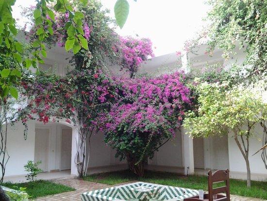 Seabel Rym Beach : jardins interieur