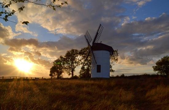 Wedmore, UK: sunset