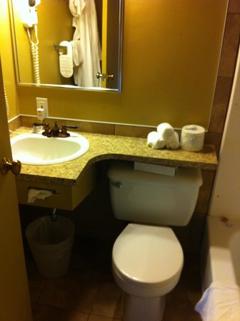 Overlander Mountain Lodge: tiny bathroom