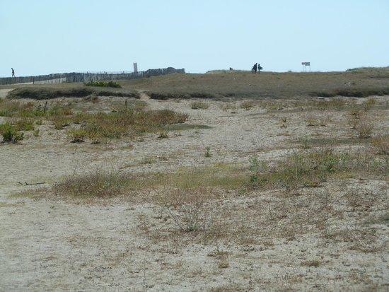 Camping Mar i Sol : Weg zum Strand (im Gegensatz zum Werbefoto)