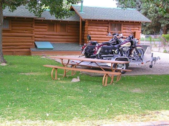 Buffalo Bill Cabin Village: esterno con coniglio