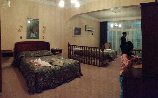 Victoria House Motor Inn: Room 6 (stayed on 22 June 2014)