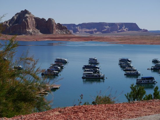 Lake Powell Resort : Plenty of boats for hire