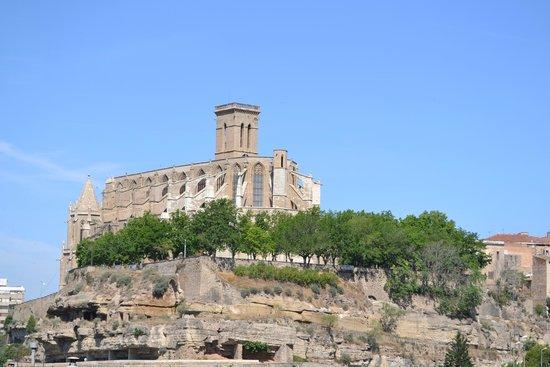 Basilica Santa Maria De La Seu