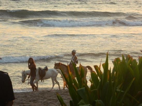 The Samaya Bali Seminyak: private beach with horse rides!