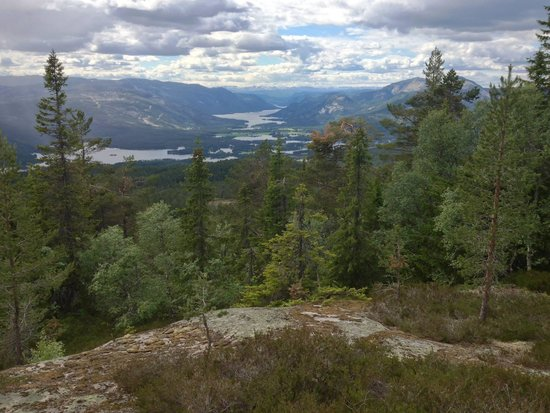 Vradal Hyttegrend: Amazing view from Venilifjellet, just above the cabins