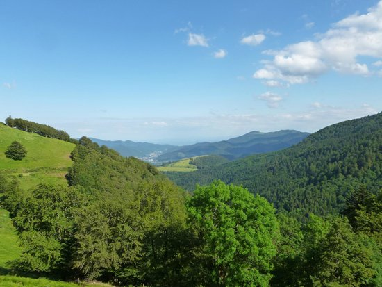 Ferme Auberge du Felsach: view from the deck of the inn