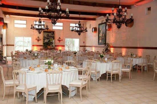 Chateau du Pian: Salle de réception