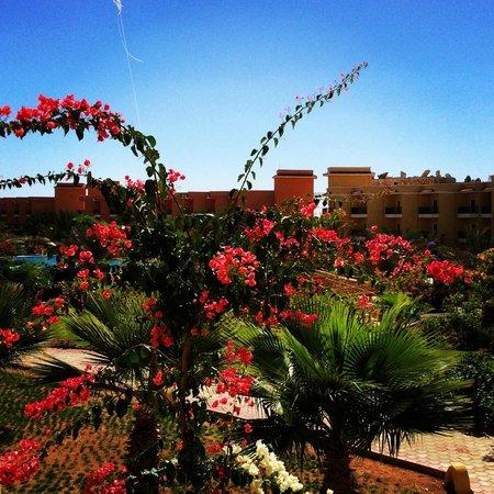 The Three Corners Sunny Beach Resort: Garden view