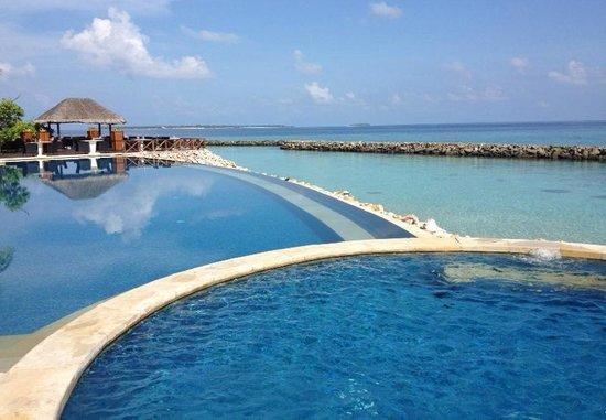 Vivanta by Taj Coral Reef Maldives: .