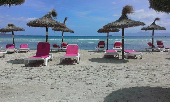 Hotel Condesa de la Bahia: plage