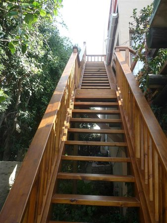A1 Kynaston B&B: OUTSIDE STAIRS WORTH THE CLIMB TO SEA 4 EVER AND BIRD ROOM do have inside stairs