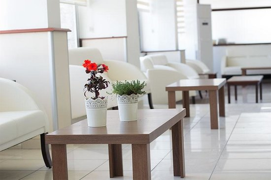 Yildirim Hotel: Lobby