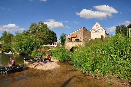 Fish and Chips; Mediterranean Mezza - Picture of Bathampton Mill, Bath - TripAdvisor