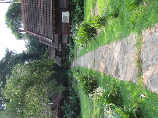 Mutiara Taman Negara : Hotel grounds