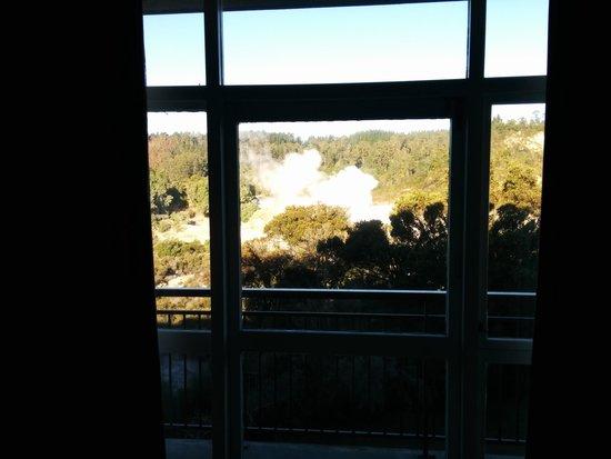 SilverOaks Hotel Geyserland : tree blocking view of geyser