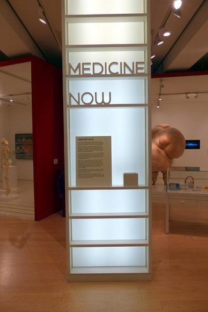 Wellcome Collection: Medicine Now exhibition