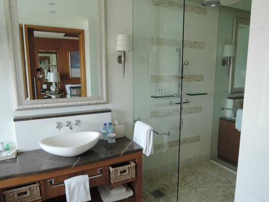 The St. Regis Saadiyat Island Resort: Normales Bad