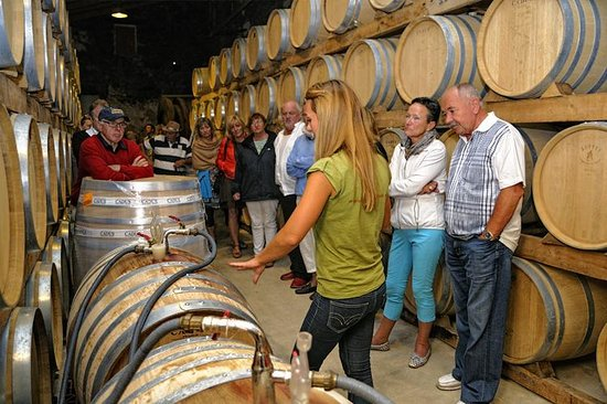 Mallorca Wine Tours