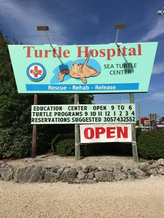 The Turtle Hospital : Outside sign