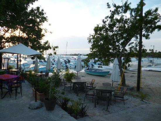 Perlita Morena: La vue depuis le restaurant