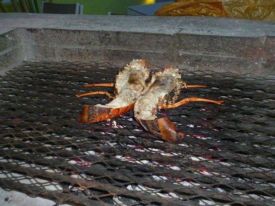 Perlita Morena: Le cuisto nous avait invités à voir la cuisson du homard