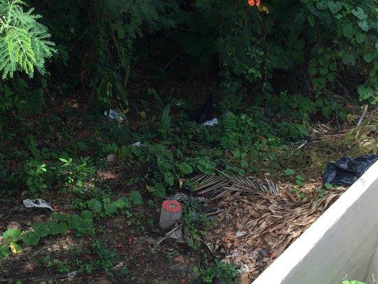 Centara Villas Samui : Rubbish just dumped next to our room