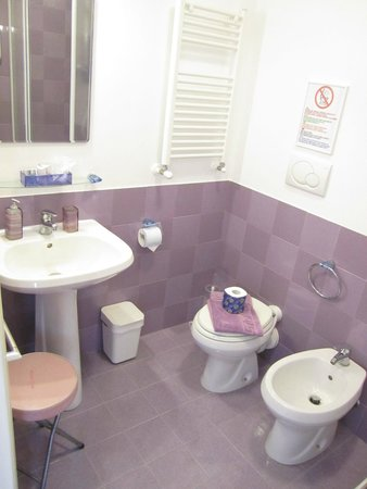 2 Passi al Colosseo B&B: Lavanda bathroom