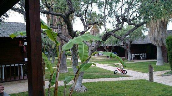 Els Prats Village: zona césped