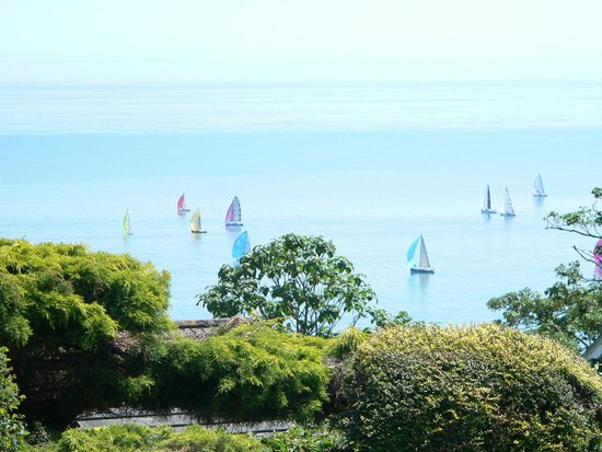 Claddagh Bed and Breakfast: Views From The Gardens - Round The Island Race