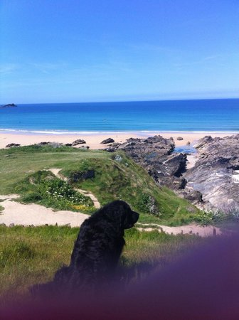 The Headland Hotel & Spa - Newquay: Looking at the sea from the Hotel grounds